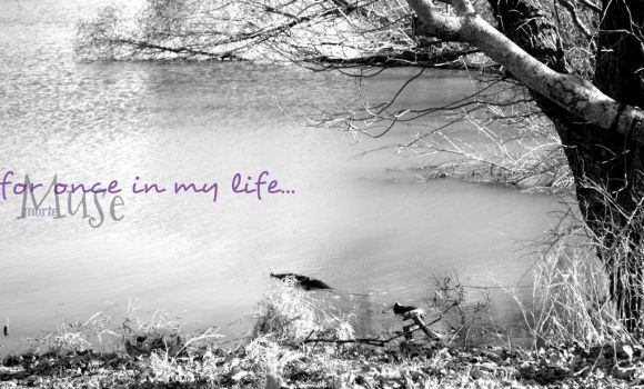 for once in my life by Muse-Morte