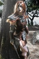Aela the huntress by Wildyama
