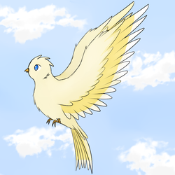 Bird by lifewatery