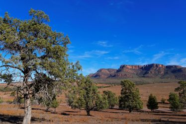 The Flinders Ranges by destroyerofducks