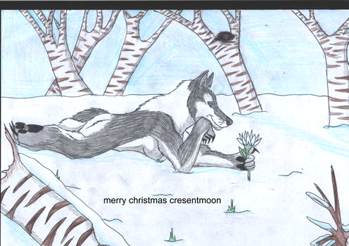 merry christmas cresentmoon by kimberleyxtrunks