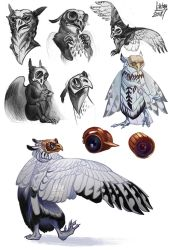 Some owl sketches by Liktar