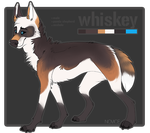 Whiskey (feral) by NOVlCE
