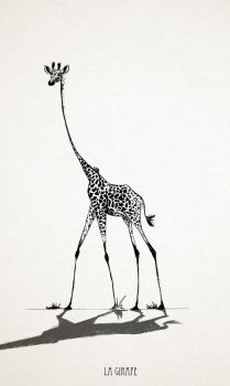 Giraffe by Claire-Lacaes