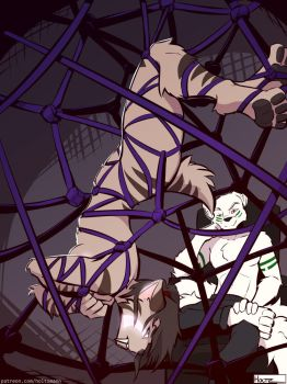 [C] 'Hang in there, Kitty!' by Holtzmann