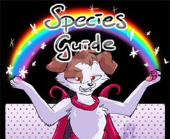 Katinka - Species Guide - October 2017 by JB-Pawstep