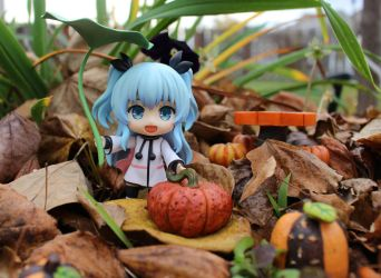 Noel's Fall Pumpkin Hunt by MillyT