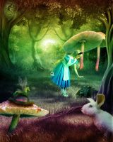 Looking For Mr. Rabbit by Every7thHeartbeat