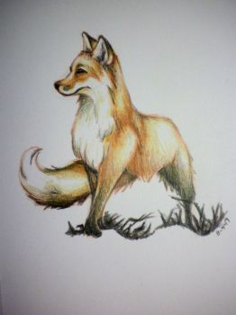 Fox Daily Draw 8-4-17 by dragonsong86