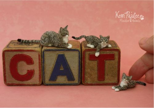 Tiny Tabby Sculptures... by Pajutee