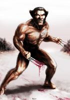 Wolverine - Weapon X by Robert-Shane