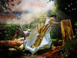 Dreams by Pickyme