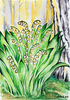 Lily of the Valley Forest by Corppu