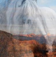 Dunbrody and the Red Mountains by Ashnandoah