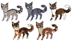 Ota cat adopts OPEN by P1geon-Feathers