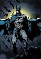 I'm Batman by Digraven