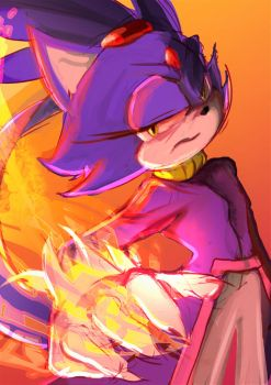 The Fire - Blaze the Cat by Deimonday