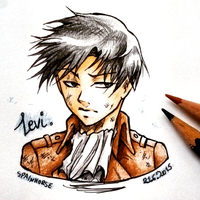 Our beloved Heichou by CrisFHatena