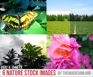 6 Nature Stock Images by TheMagicianLord