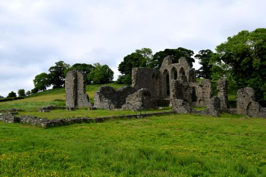 The Abbey of County Down by Renartus