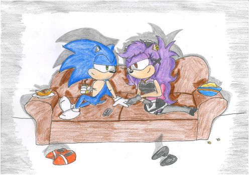 sonic and Domestic by udiszabi