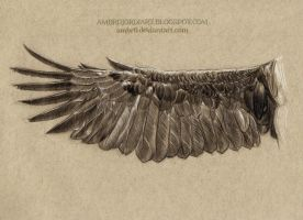 Eagle Wing Drawing by AmBr0