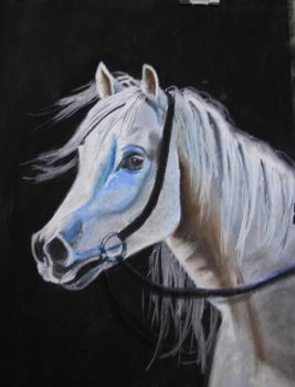 White Horse by WashedByBlood