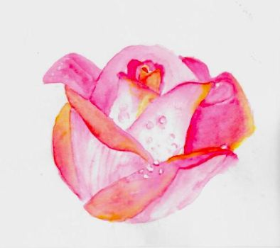 Watercolor Rose by emilybunnysoft
