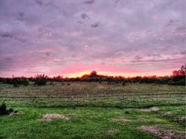 Sunset, painterly by Lectrichead