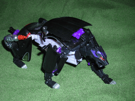 Transformers Ravage by euphoricallydead