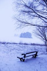 winter bench by conceptually