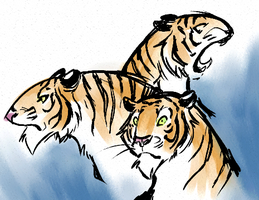 Some Tigers by omgdragonfly