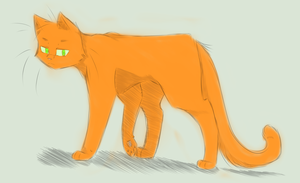 Warriors: Firestar by LooseEndss