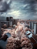 infrared - bukitGombak by shin-ex