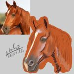 WIP#2 Horse Head by Aiclo