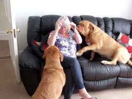 Mam and dogues by Genesis2Revolution