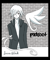HP: Angel Padfoot by prongsie