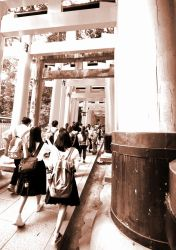 Torii Stroll by OcioProduction