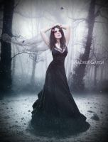 Frozen by AndyGarcia666