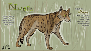 Nuem - reference by KoomaWolf