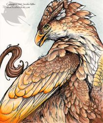 Firewing Gryphon by Nambroth