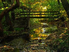 Bridge Into Autumn 2 by AgiVega
