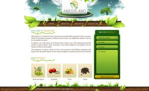 Ameer Land website design by ahmedelzahra