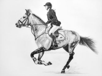 Horse sketch by Lin-a-art