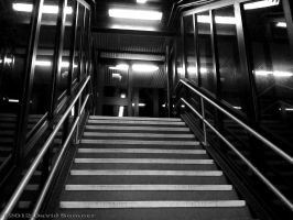 Stairway to nowhere... by niggyd