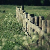 fence by klinter