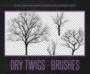 Dry Twigs | Brushes by sweetpoisonresources