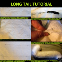 Long Tail Tutorial by fenrirschild