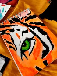 Tiger face by ffried84