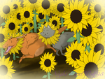 Derp Friday: Sunflowers by nightwindwolf95
